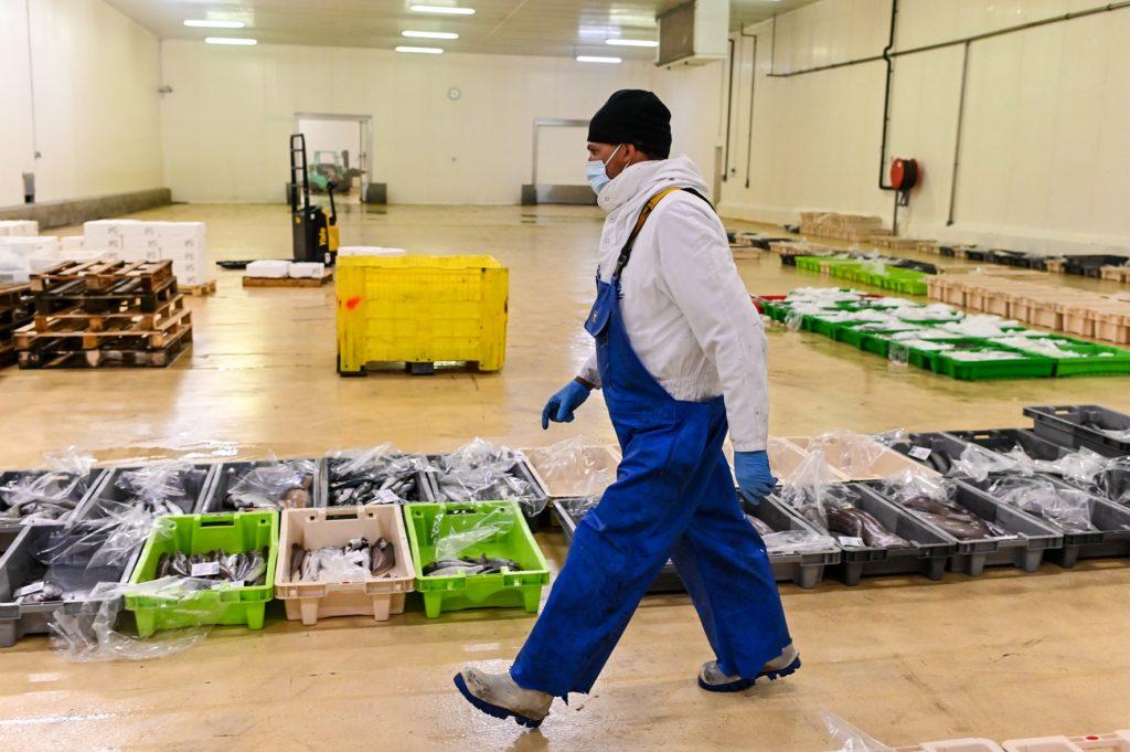 Porte de Pêche - Homme avec  bacs de poissons à ses pieds